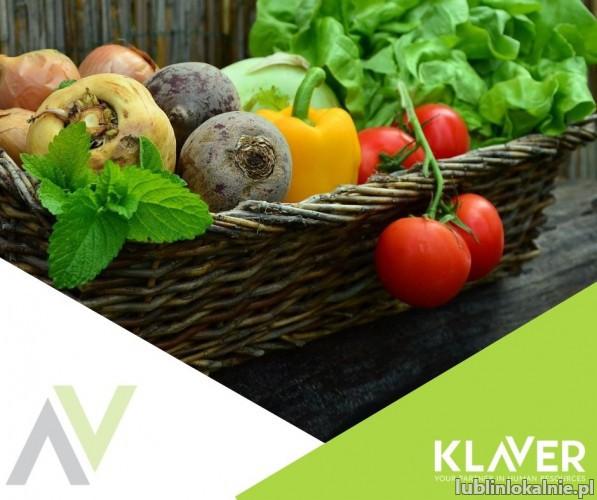 Sortowanie owoców i warzyw bez doświadczenia w Holandii Den Haag !!!