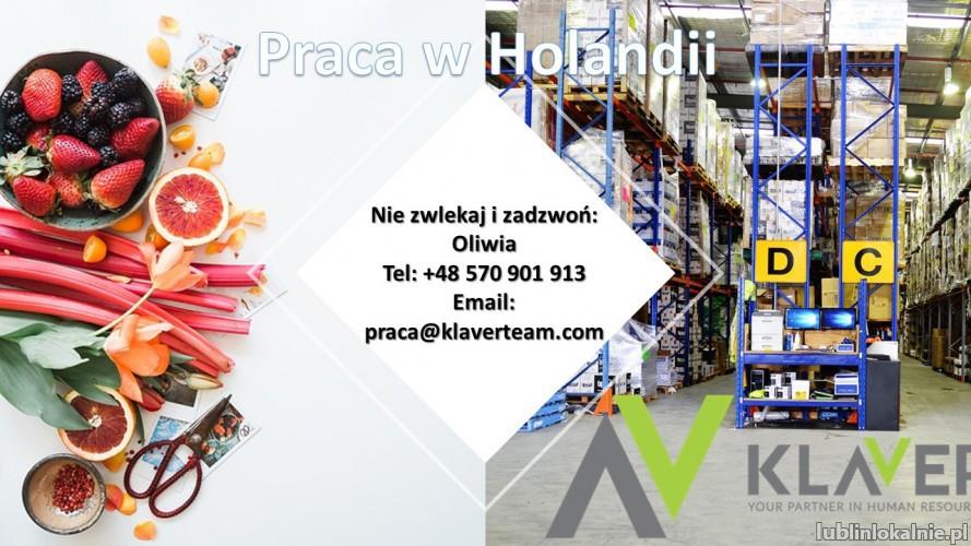 Praca na produkcji bez doświadczenia od zaraz Holandia- Zaandam  !!!